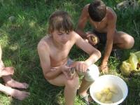 Дружно чистим картошку