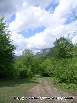 Вид из лагеря на Орлиный скалы
